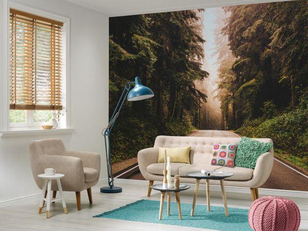 Fototapete Digitaldruck Straße durch Wald 255 x 350 cm