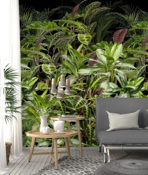 Vlies Fototapete Palmen Dschungel Tropical 200x280cm