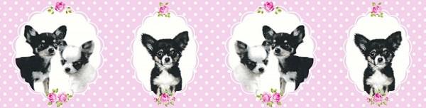 Tapeten Bordüre Chihuahua Hunde schwarz rosa Punkte