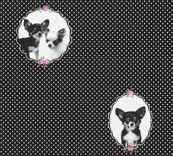 Vliestapete Kinder Chihuahua Hunde Punkte schwarz weiß