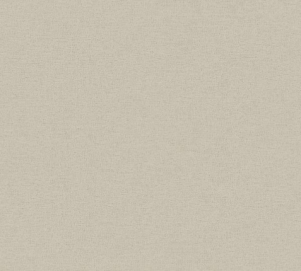 Ethnic Origin Uni Vliestapete grau beige