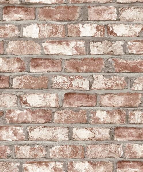 Vliestapete Ziegelstein Klinker terra rost creme 3102