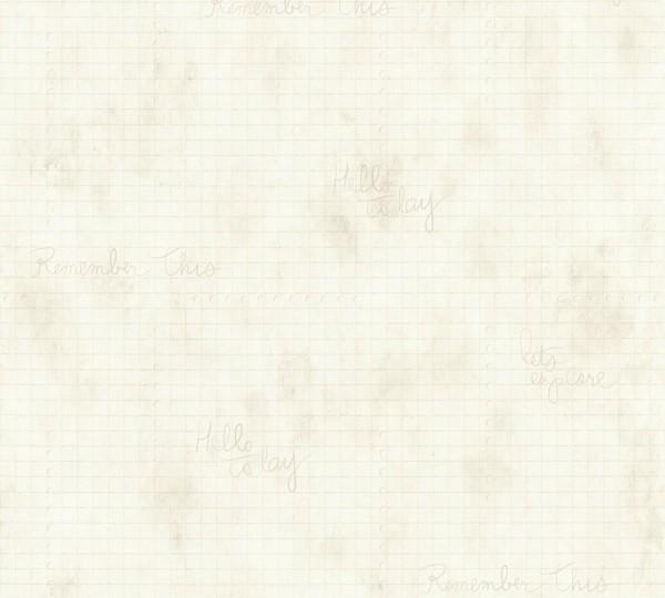Vliestapete Karo Muster grafisch Schrift beige