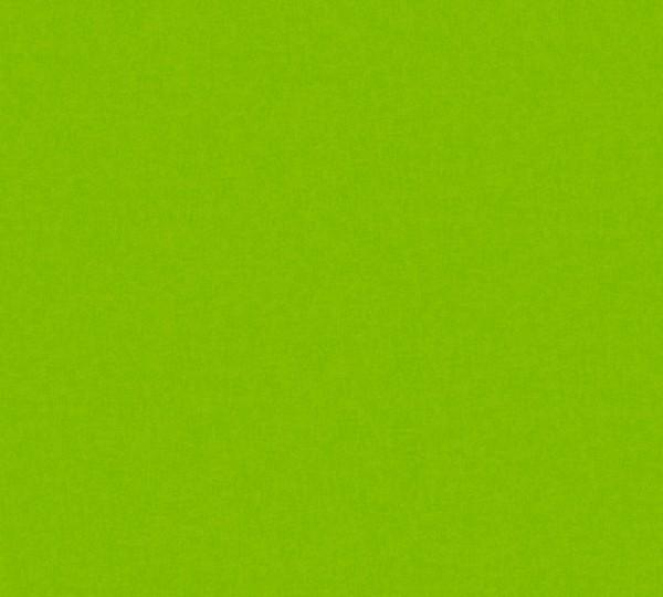 Vliestapete Kinder Uni grün